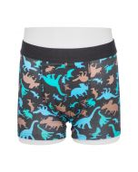 Dino Print Boys Absorbent Boxer Pants